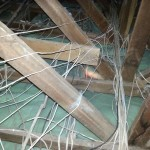 isotherm-ceiling-insulation-installing-10